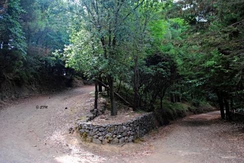 Un tratto del percorso. Agosto 2013